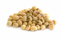 Soy beans. Close up of soy beans in isolated white background Royalty Free Stock Photo