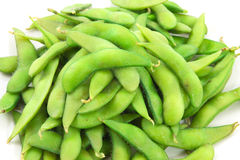 Soy beans Stock Image