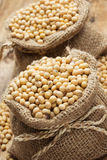 Soy beans in hessian bags Royalty Free Stock Images