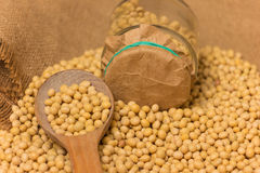 Soy beans Stock Photo