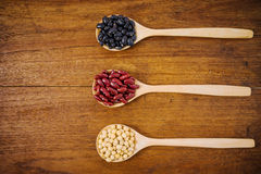 Soy beans, Kidney beans, black beans Stock Photography