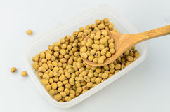 Soy beans in plastic box Stock Photography
