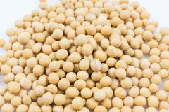 Soy beans. Close up on white background Royalty Free Stock Photo