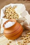 Soy beans, tofu & nigari Royalty Free Stock Photo