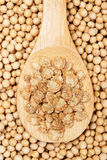 Soy flakes in wooden spoon Royalty Free Stock Photos