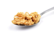 Soy granules on spoon Stock Photography