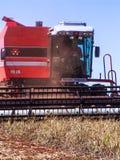 Soy harvest Stock Photos