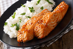 Soy-Honey Glazed�salmon and camolino rice close-up. horizontal Stock Image
