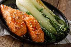 Soy-Honey Glazed�salmon and roasted cabbage bok choy close-up. h Stock Photography