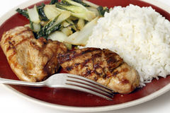Soy marinaded chicken breast meal Royalty Free Stock Photos