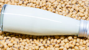 Soy milk bottle on soy beans Royalty Free Stock Photo
