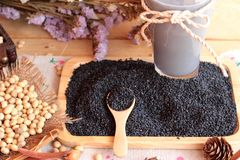 Soy milk mix black sesame with soybean seed and black sesame see Royalty Free Stock Photo