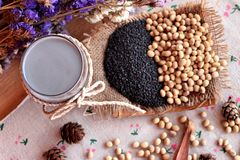 Soy milk mix black sesame with soybean seed and black sesame see Royalty Free Stock Images