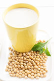 Soy milk. Organic soy milk in cup Stock Photos