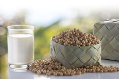 soy milk and soy bean in garden. Stock Photography