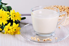 Soy milk with soy beans Stock Photo