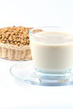 Soy milk with soy beans Royalty Free Stock Photo