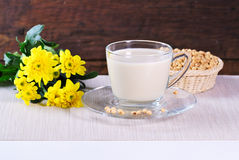 Soy milk with soy beans Stock Photography