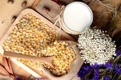 Soy milk with soya beans Stock Photos