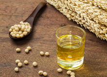 Soy oil and soy bean. On wooden table Stock Images