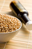 Soy sauce and soy beans Stock Photography
