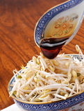 Soy sauce on soy sprout Royalty Free Stock Photo