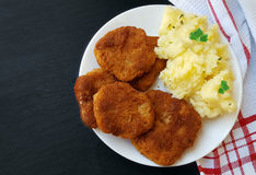 Soy schnitzel on a white plate Royalty Free Stock Image