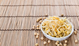 Soy Sprouts (preserved) Stock Photo