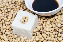 Soy tofu and sauce on soybeans Royalty Free Stock Images
