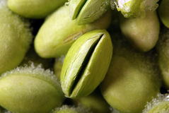 Soya Bean Stock Images