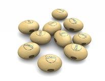 Soya bean GMO Stock Photo
