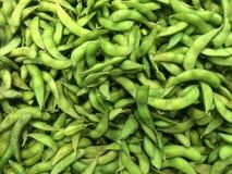 Soya bean. Green Soya bean fresh organic Royalty Free Stock Photography