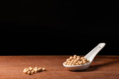 Soya bean on a spoons Stock Image