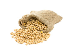 Soya beans in a bag  on white. Background Stock Images