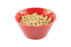 The soya beans Stock Image