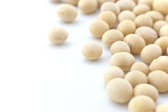 Soya Beans - Close up - Isolated Royalty Free Stock Photography