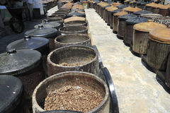 Soya beans fermenting. An image of a traditional soya sauce factory fermenting the soya beans stock image
