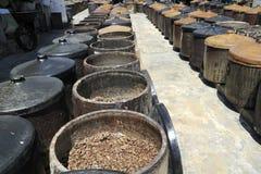 Soya beans fermenting Stock Image