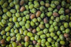 Soya beans Royalty Free Stock Photo