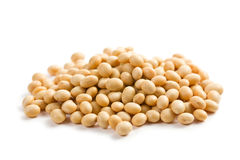 Soya beans on white background Stock Images