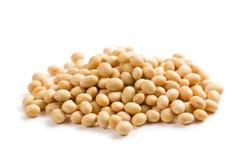 Soya beans on white background