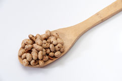 Soya beans on wooden spoon Royalty Free Stock Image