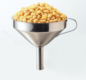Soya funnel. Close up soy beans with funnel stock images
