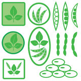 Soya icons Royalty Free Stock Images