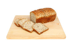 Soya and linseed bread Stock Image
