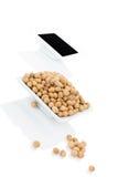 Soya och soybeans. Royaltyfri Foto