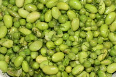 Soya and peas salad. Green salad with peas and soya flavored with dill Stock Images