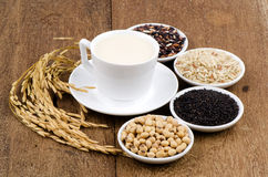 Soya, sesame seeds, soy and rice drinks ingredients healthy. Stock Image