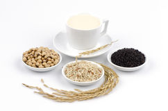 Soya, sesame seeds, soy and rice drinks ingredients healthy. Royalty Free Stock Images