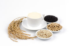 Soya, sesame seeds, soy and rice drinks ingredients healthy. Royalty Free Stock Photo